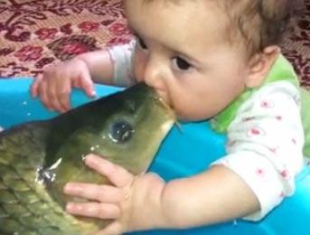 毁童年:小孩亲吻鲤鱼 鲤鱼还意犹未尽的样子
