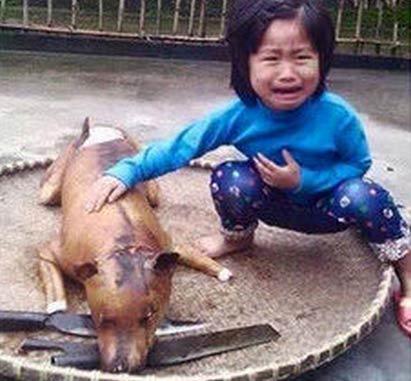 女童狗肉摊前认出走失爱犬尸体 蹲地失声痛哭