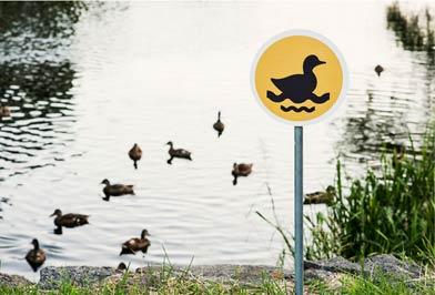 """立陶宛当地居民建立""""微小路标""""项目 提醒保护动物"""