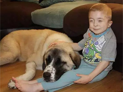 当最不幸的孩子遇到最不幸的狗 幸福就开始了