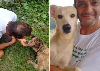 狗狗救星 这只狗狗被人打破头 伤好后的它是那么可爱