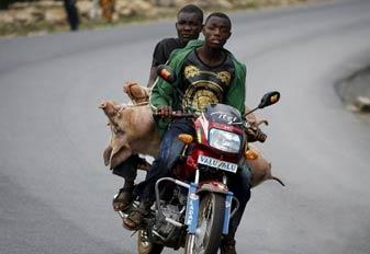布隆迪的日常生活 阿三地位受到威胁