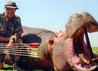 美国妇科医生杀死第二头非洲雄狮 曾杀死大象河马斑马