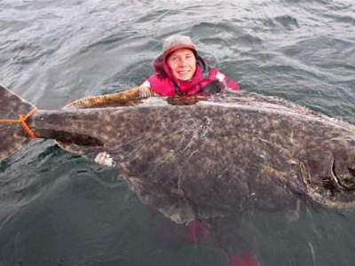 男子海钓钓到巨型比目鱼 合影后放生
