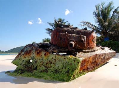 16+坦克在自然里看起来那么太平 好像战争从来没有发生过