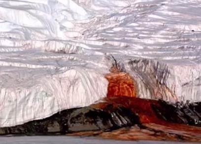 南极一处冰川不断流血 里面藏着的东西让科学家惊呆了