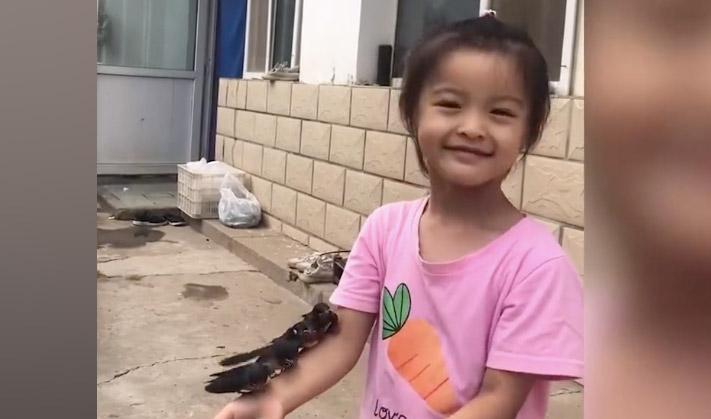 【视频】万物皆有灵性:兄妹收养小燕子 长大后招手就来