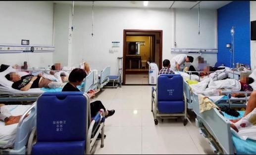 四川宜宾泸州多人被毒蛇咬伤 医院病房被毒蛇咬伤病人扎推